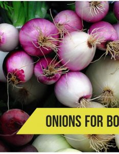 How To Get Rid OF Boils With Onion - 7 Methods