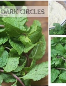 Use Mint Leaves For Dark Circles 11 Simple Ways